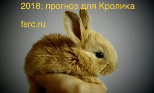 2018: прогноз для Кролика