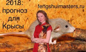 2018: прогноз для Крысы